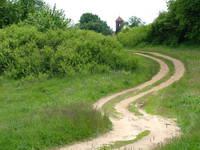 shortcut - woods